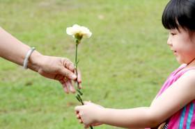 Tolerância: como praticar