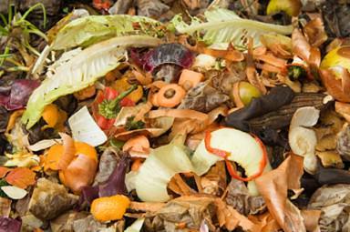 Que tal produzir menos lixo?