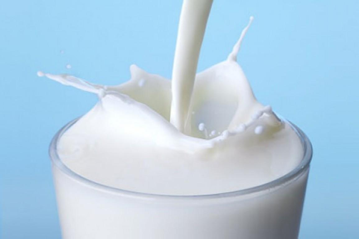 Leite, iogurte e derivados