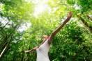 21 de março, Dia da Floresta