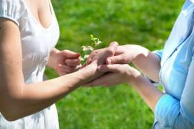Reiki e o valor da gratid�o