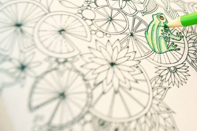 N�s testamos: arte terapia com livros de colorir
