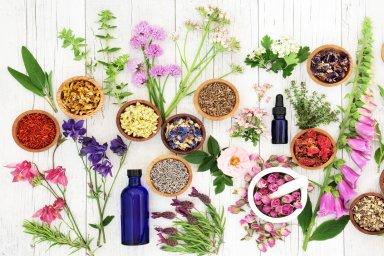 Vida caótica? Florais e Aromaterapia podem ajudar a reencontrar seu centro