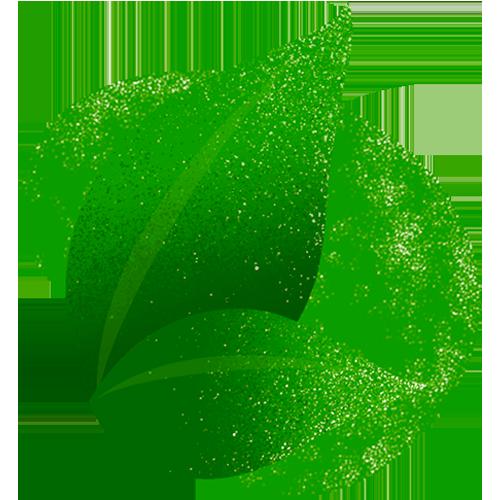 Cor de 2020: Verde
